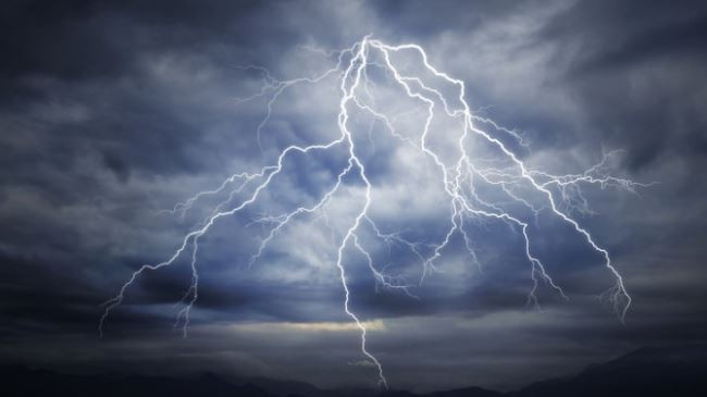 Rs 1 million worth of sheep killed by lightning strike in Myagdi