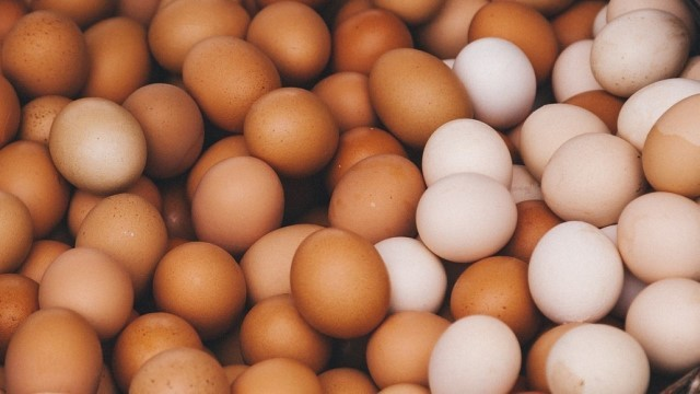 Man Eats 41 Eggs For Rs. 2,000 Bet With Friend, Dies