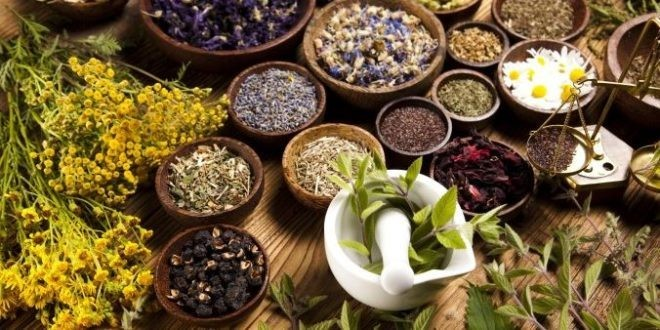 Export of medicinal herbs to India still on hold